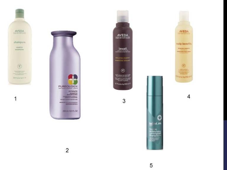 Shampoo1.jpg