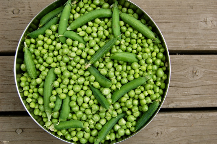 peas-shelled.jpg